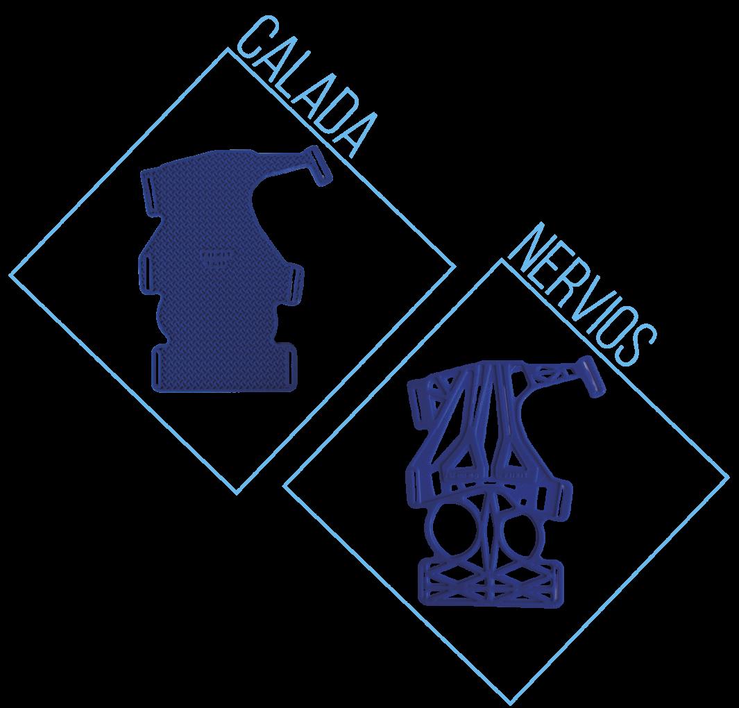 CALADA Y NERVIOS FÉRULA ELEFANTE