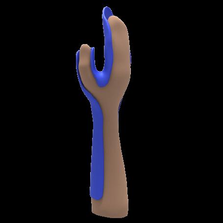 Férula palmar